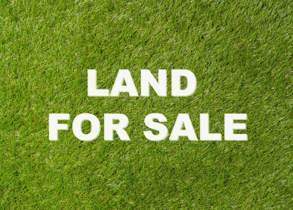 Everything You Need to Know About Buying a Plot of Land