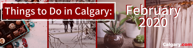 Things to Do in Calgary this February