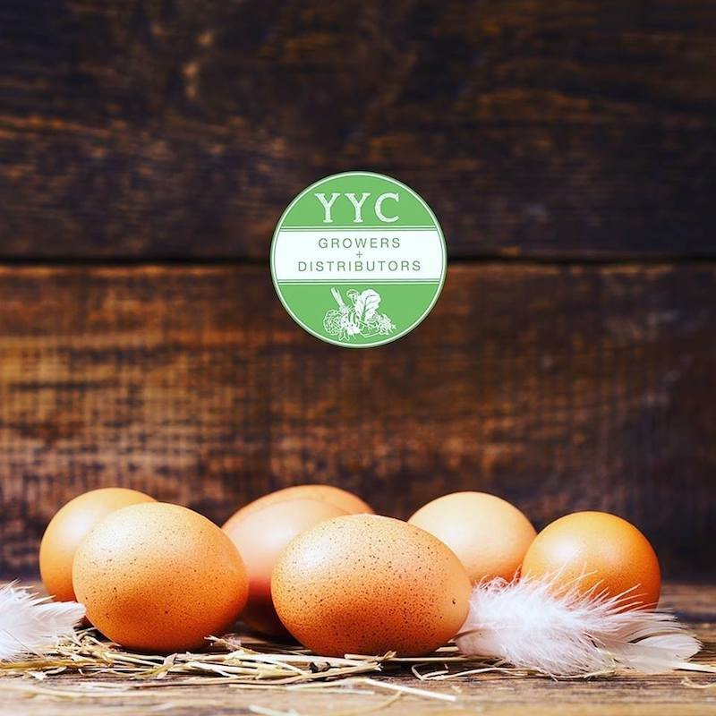 Eggs sourced locally in Calgary from YYC Growers